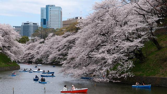 unique honeymoon ideas in Tokyo